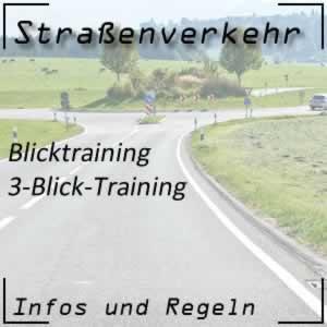 3-Blick-Training in der Fahrschule