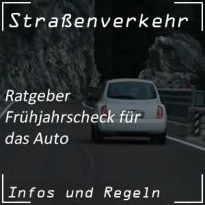 Frühjahrscheck-Auto