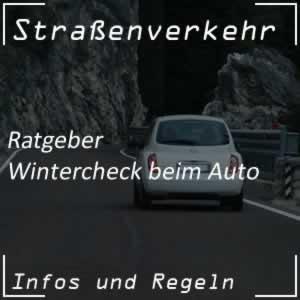 Wintercheck - Auto