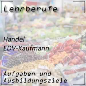 EDV-Kaufmann