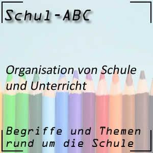 Organisation der Schule