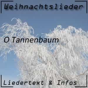 Weihnachtslied O Tannenbaum