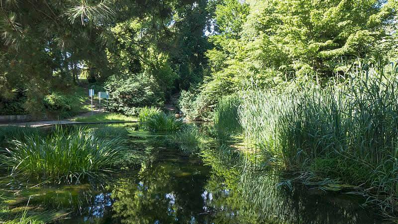 Denglerpark in Wien 21