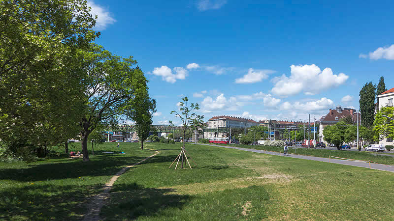 Stadtwildnis Gaudenzdorfer Gürtel in Wien Meidling