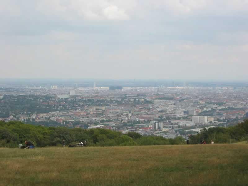 Lainzer Tiergarten mit Wiener Blick