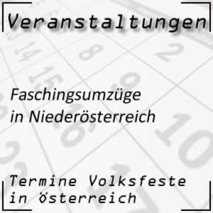 Faschingsumzüge Niederösterreich