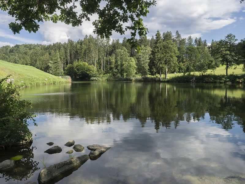 Buchsee bei Kramsach im Tiroler Seenland