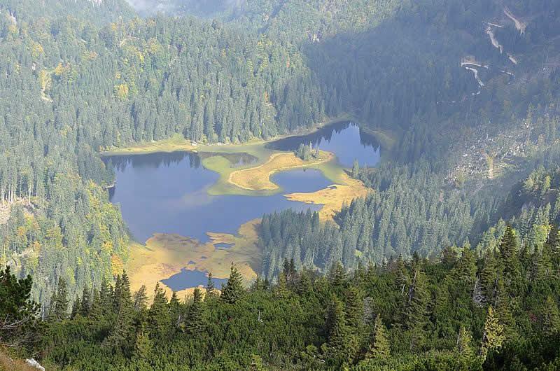 Obersee beim Lunzer See in Niederösterreich