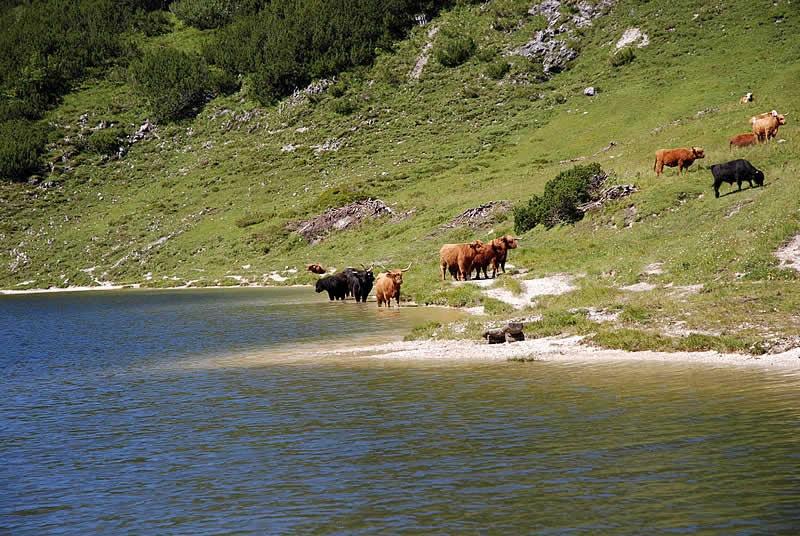 Wildensee im Toten Gebirge Steiermark