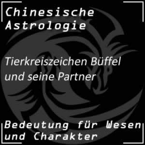 Tierkreiszeichen Büffel Partner