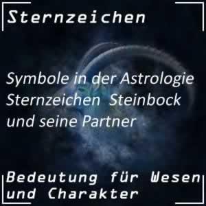 Steinbock Partner