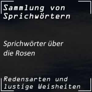 Sprichwort Rosen Volksmund