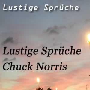 Chuck Norris Sprüche (3)