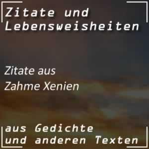 Zitate Zahme Xenien (Goethe)