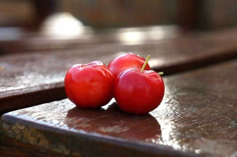 Lebensmittel Acerola