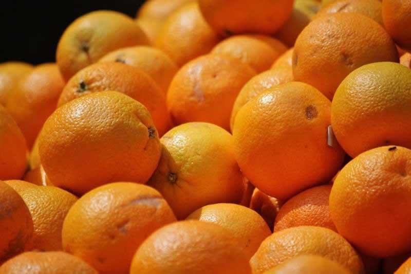 Lebensmittel Apfelsine