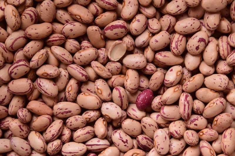 Lebensmittel Bohnen