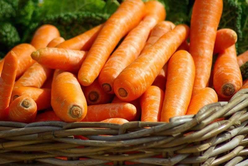Lebensmittel Karotten Möhren