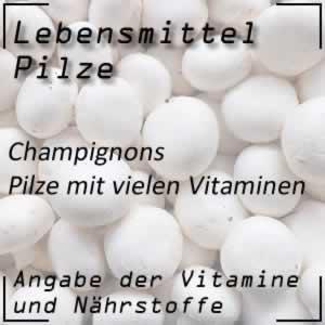 Pilze Champignons Nährstoffe