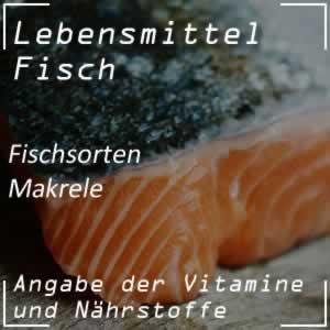 Makrele - Speisefisch mit viel Vitamin B12