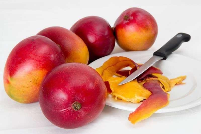 Lebensmittel Mango