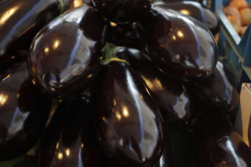 Lebensmittel Melanzani Aubergine