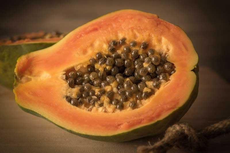 Lebensmittel Papaya