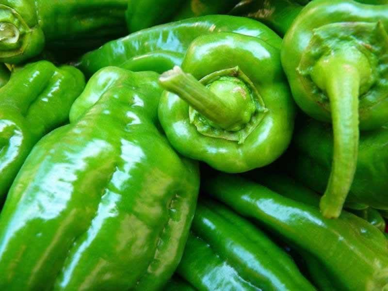 Lebensmittel Paprika