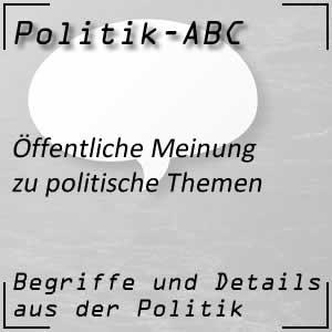 Öffentliche Meinung in politischen Fragen