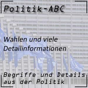 Wahlen in der Politik