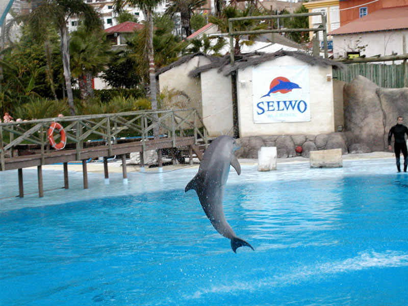 Selwo Tierpark in Andalusien