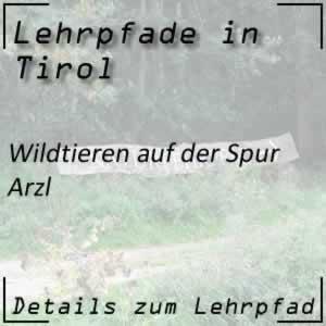 Arzl Lehrpfad Wildtiere