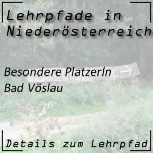Lehrpfad Bad Vöslau Besondere Platzerln