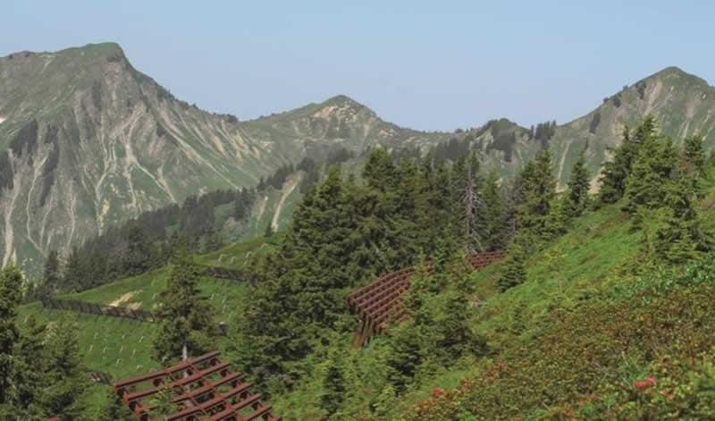 Lehrpfad Lawinenwege bei Blons in Vorarlberg