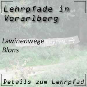 Lehrpfad Blons Lawinenwege