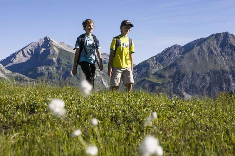Lehrwanderweg bei Braz in Vorarlberg