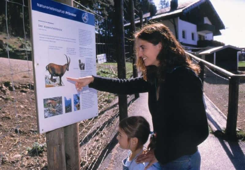 Naturlehrpfad Pfänder bei Bregenz