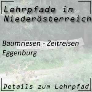 Lehrpfad Eggenburg Baumriesen - Zeitreisen