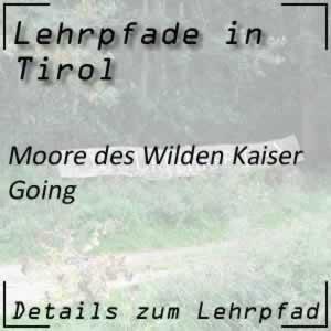 Lehrpfad Going Moore des Wilden Kaiser