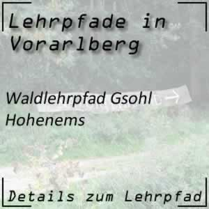 Lehrpfad Hohenems Waldlehrpfad Gsohl