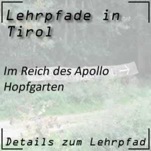 Hopfgarten Bergmähder