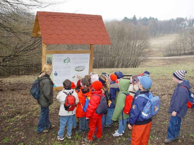 Lehrpfad im Lainzer Tiergarten beim Nikolaitor