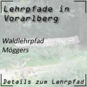 Lehrpfad Möggers Walderlebnispfad