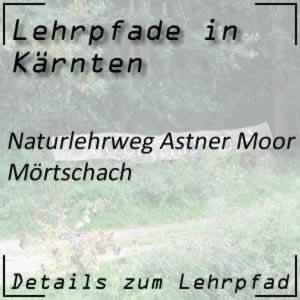 Mörtschach Astner Moor