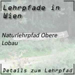Naturlehrpfad Obere Lobau Wien