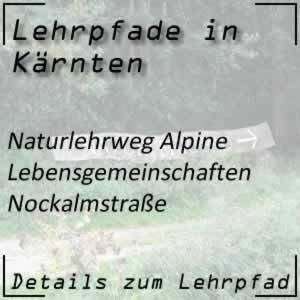 Nockalmstraße Naturlehrweg