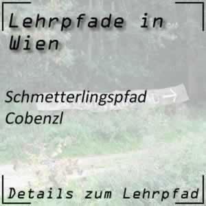 Schmetterlingspfad Wien Cobenzl