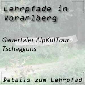Lehrpfad Tschagguns Gauertaler AlpkulTour