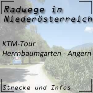 Radweg KTM-Tour Herrnbaumgarten - Angern