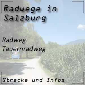 Tauernradweg von Krimml bis Salzburg
